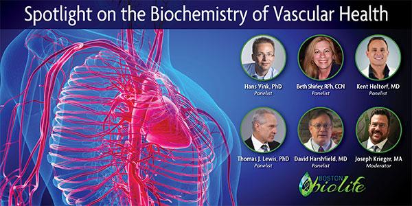 Summer Series: Vascular Health Mini-Course